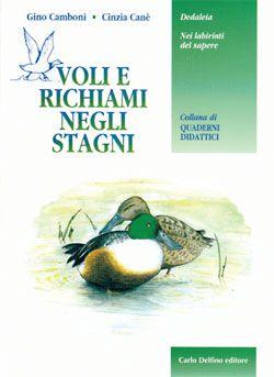 Primo di una collana di quaderni didattici e scritto da due insegnanti, questo volumetto presenta ai ragazzi, con l´ausilio anche di schede didattiche, gli ambienti umidi della Sardegna.