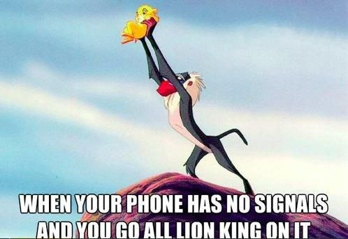 Lion king cell phone quote