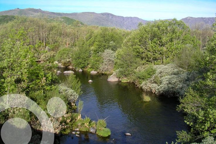 River Tera. More information to plan your trip to #Sanabria in www.qnatur.com