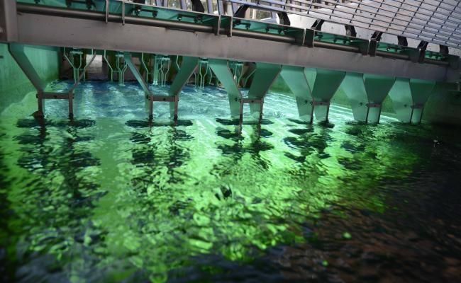 Wedeco UV Sistemleri Garda Gölü İçin Kullanıldı!