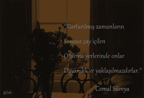 * Cemal Süreya