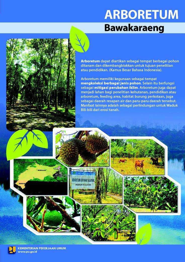 Arboretum Bawakaraeng