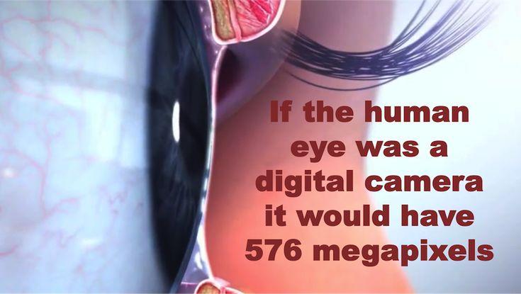 If a human eye was a digital camera #ophthalmology #eye #scientificanimations #3danimation #thursdaydidyouknow