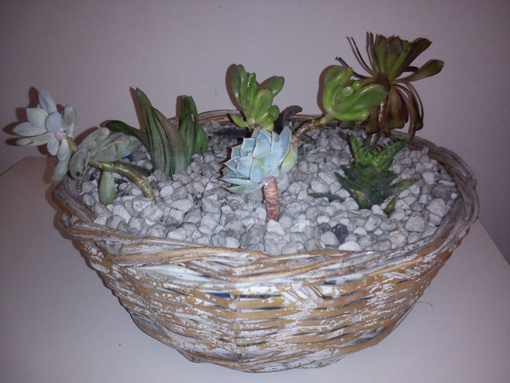 Take one old basket. Put a piece of nylon so that covers all interior surface of the basket. Put some gravels to the bottom of the nylon. Add compost. And of course small succulents that you have. It's better to plant different succulents. Add a little more compost. Decorate with little gravels. In my basket I decorated with white holystone.