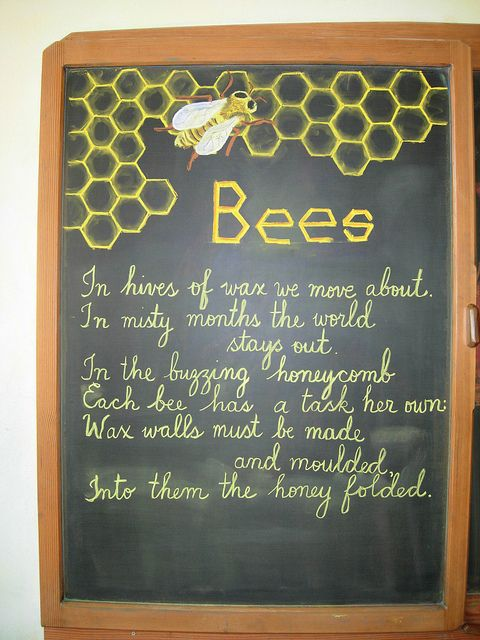 Waldorf ~ 4th grade ~ Human & Animal ~ Bees ~ chalkboard drawing: Bees Lessons, Grade Bees, Grade Animal, Bees Poems, Chalkboards Paintings, 4Nd Grade, Chalkboards Drawings, 4Th Grade, 1St Grade