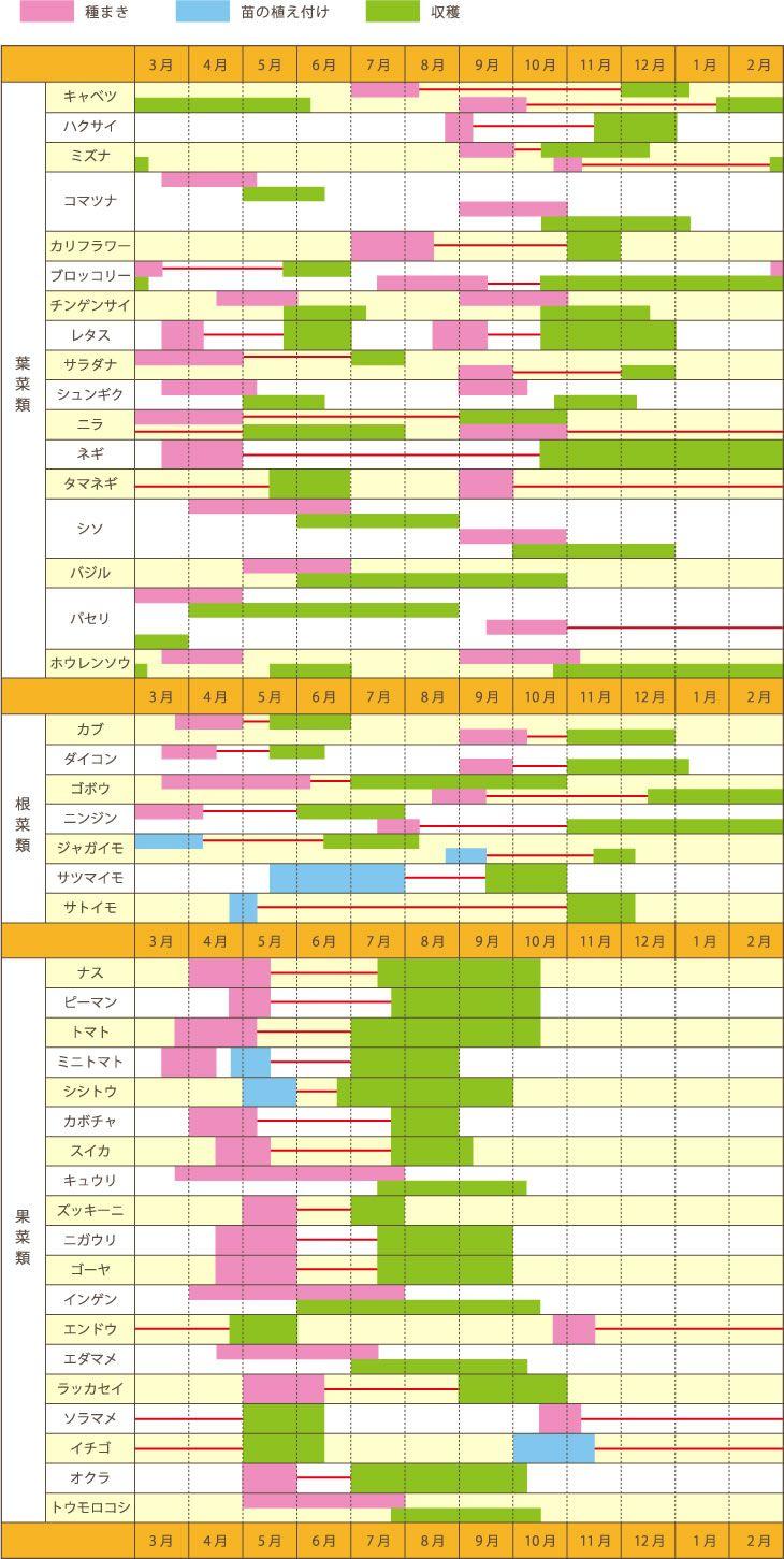 種まき 苗の植え付け 収穫  3月 4月 5月 6月 7月 8月 9月 10月 11月 12月 1月 2月 葉菜類 キャベツ ハクサイ ミズナ コマツナ カリフラウー ブロッコリー チンゲンサイ レタス サラダナ ジュンギク ニラ ネギ タマネギ シソ バジル パセリ ホウレンソウ 3月 4月 5月 6月 7月 8月 9月 10月 11月 12月 1月 2月 根菜類 カブ ダイコン ニンジン ジャガイモ サッマイモ サトイモ 3月 4月 5月 6月 7月 8月 9月 10月 11月 12月 1月 2月 果菜類 ナス ピーマン トマト ミニトマト シシトウ カボチャ スイカ キュウリ ズッキーニ ニガウリ ゴーヤ インゲン エンドウ エダマメ ラッカセイ ソラマメ イチゴ オクラ トウモロコシ 3月 4月 5月 6月 7月 8月 9月 10月 11月 12月 1月 2月