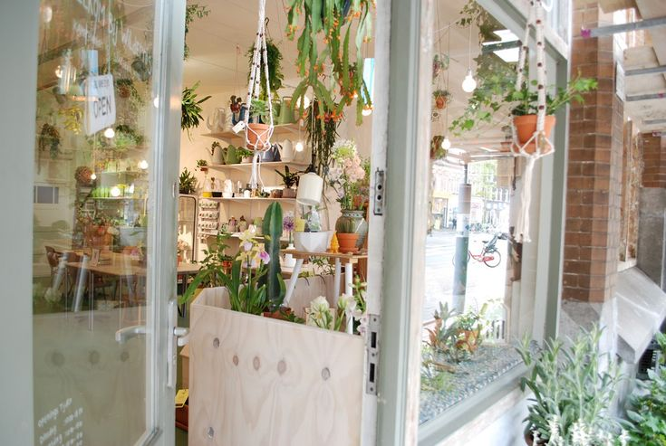 Waterworks in Urban Jungle Paradise: Wildernis Amsterdam // Urban gardening is happening and Wildernis in Amsterdam is the absolute hot-spot for all interior and urban plant lovers in our Dutch capital city.