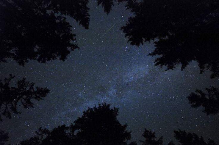 The Perseid meteor shower over Rogla, Slovenia on Aug. 13, 2015.