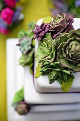 succulent wedding cake - erica o'brien  succulents work very well as cake decoration.