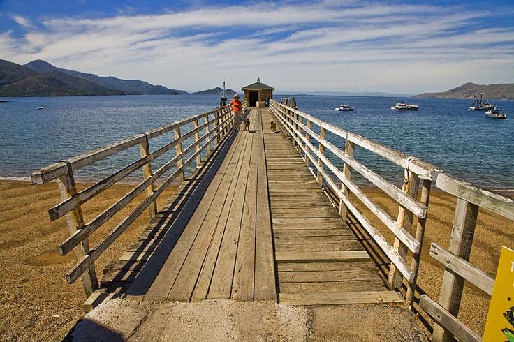 French Pass wharf,  see more at New Zealand Journeys app for iPad www.gopix.co.nz