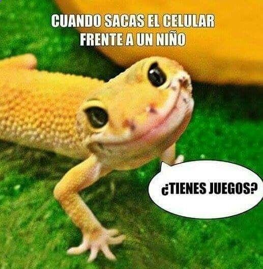 Imagenes de Humor #memes #chistes #chistesmalos #imagenesgraciosas #humor www.megamemeces.c... ➢➢ http://www.diverint.com/imagenes-graciosas-david-suarez-camara-oculta-camara-oculta