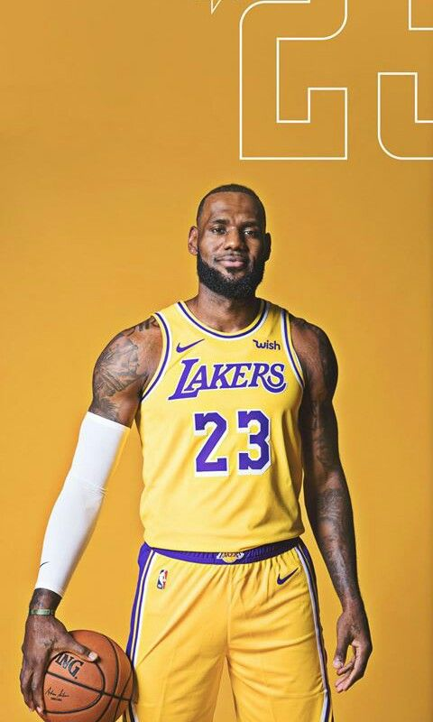 A Basketball Court. Lebron Lakers fcbd5669b