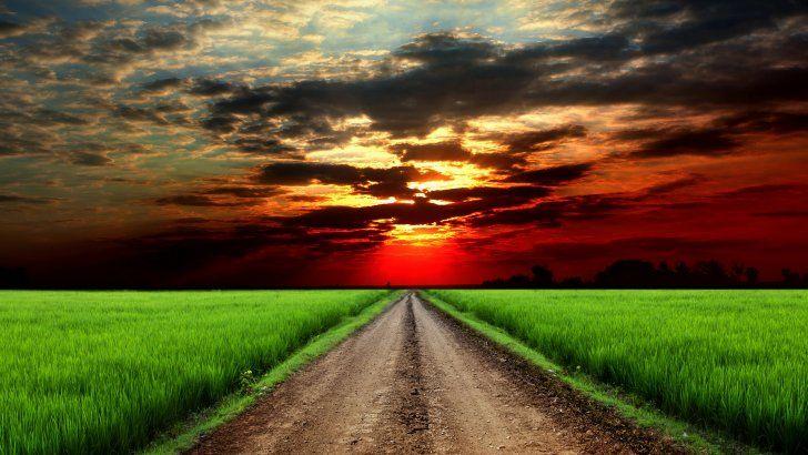 Campo Verde Cielo Rojo