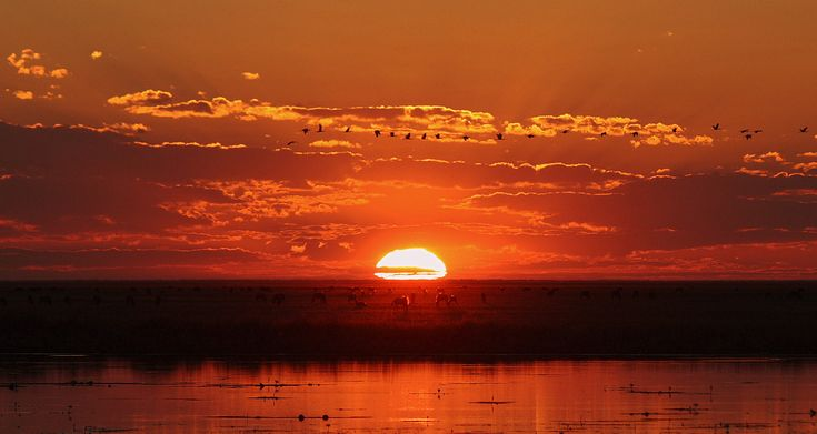 A tequila sunset in Liuwa Plains National Park!