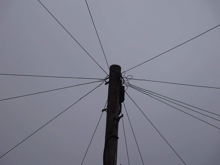 16th February 2017 - second tallest thing you saw today. Telegraph pole.