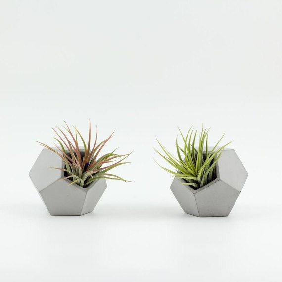 les 25 meilleures id es de la cat gorie jardini res en b ton sur pinterest pots en b ton pots. Black Bedroom Furniture Sets. Home Design Ideas