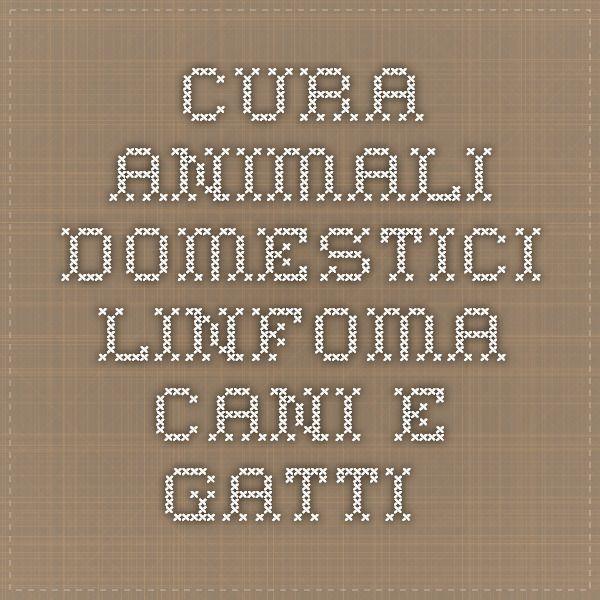 Cura Animali Domestici - Linfoma cani e gatti.