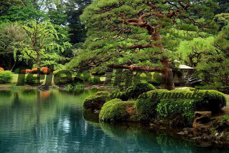 Mejores 21 im genes de jardines japoneses en pinterest jardines japoneses imagenes de - Fotos jardines japoneses ...