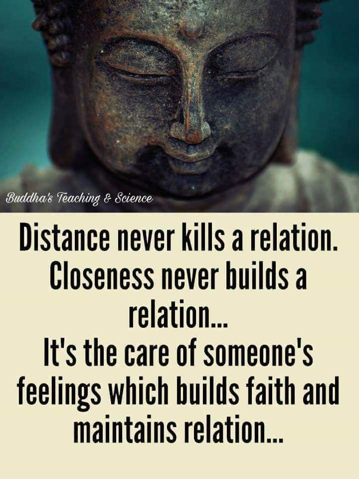 Pin by Sandip Dhanvijay on Discuss. | Buddha quotes inspirational ...