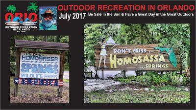 Outdoor Recreation In Orlando: Homosassa Springs Wildlife State Park