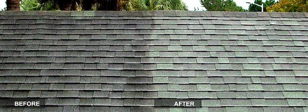 Should You Have Your Windows Cleaned Professionally Roof Cleaning Cedar Roof Roof