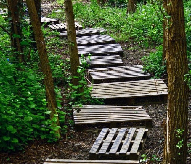 Now this is a great inexpensive idea for a path through the