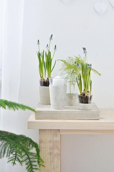[Nachmachtipp] Vasen Aus Beton