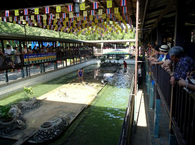 Travel and Lifestyle Diaries Blog: Thailand: Elephants, Crocodiles, Tigers and Orchids in Samphran