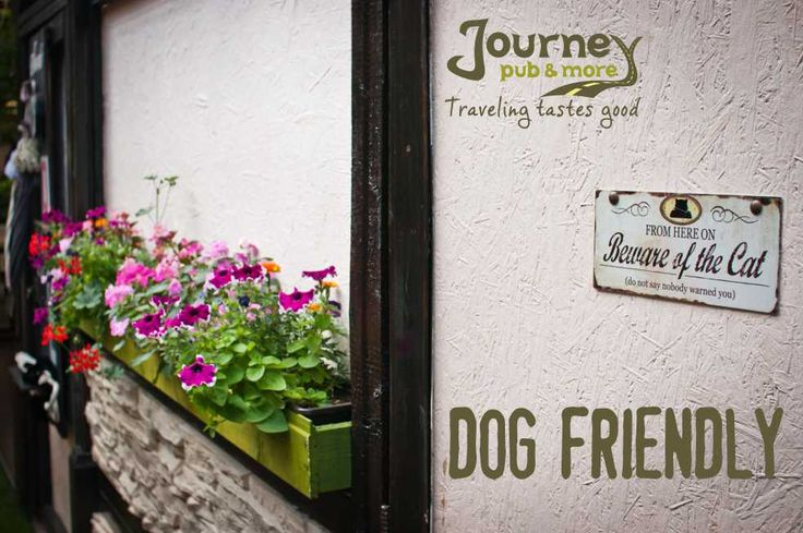 Bring your friend, we're dog friendly.