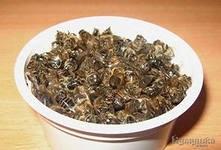 Новости интеллектуального развития: Бесплатный семинар по апитерапии (мёд, цветочная пыльца, прополис и маточное молочко, трутневый гомогенат, пчелиный подмор, перга, воск и пчелиный яд.)