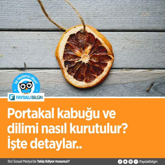 Portakal dilimi nasıl kurutulur? - Faydalı Bilgin #portakal #pratikbilgi