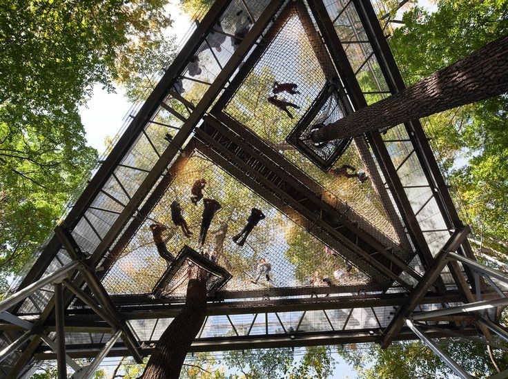 These arboreta work to change the way we understand trees, but they also offer new ways of thinking about architecture.