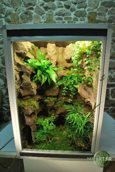 fabricant de d cor terrarium terrarien aquaterrarium. Black Bedroom Furniture Sets. Home Design Ideas