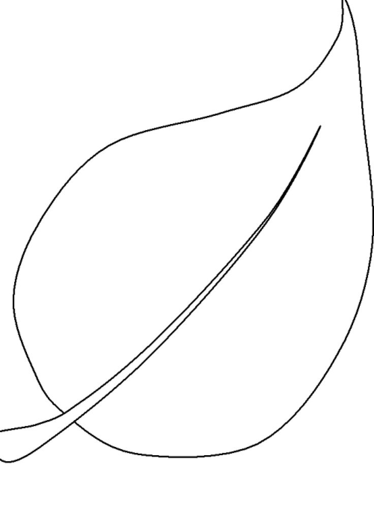 20 best leaves coloring pages images on Pinterest Colouring