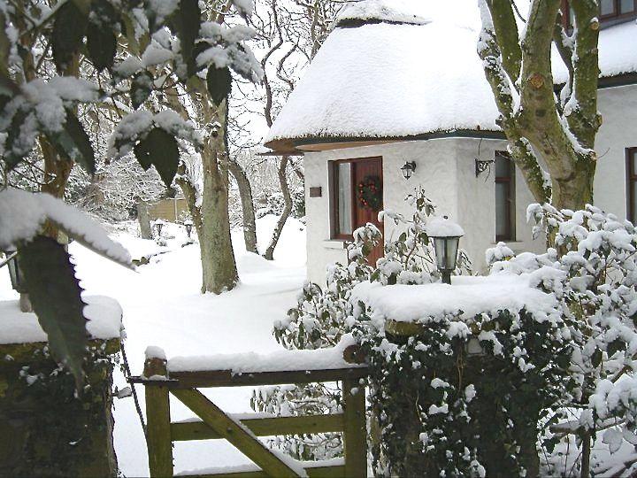 Garden Cottage White Christmas!