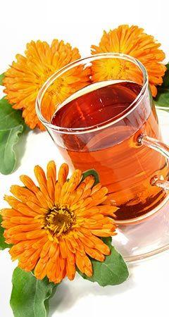 Infos zu Wirkung und Anwendung der Ringelblume - sie hilft bei bei verletzter oder entzündeter Haut ... www.ihr-wellness-magazin.de