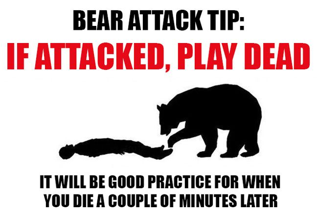 True. I never got this logic, why don't I lay down and let myself get mauled by a bear?!?! Sounds like SUCH fun!