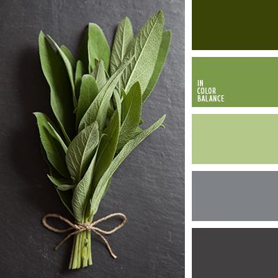 With Greenery being the color of the year - we love this color palette!