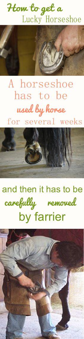 Lucky Horseshoe For Sale, Horseshoe Charm, Real Horseshoe, Iron Horseshoe, Horseshoe Gift, Equestrian Gift