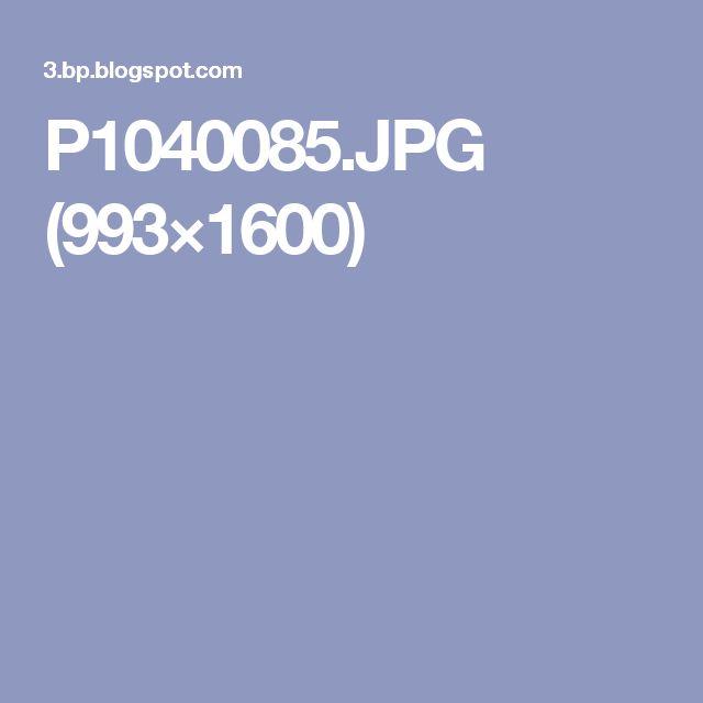 P1040085.JPG (993×1600)