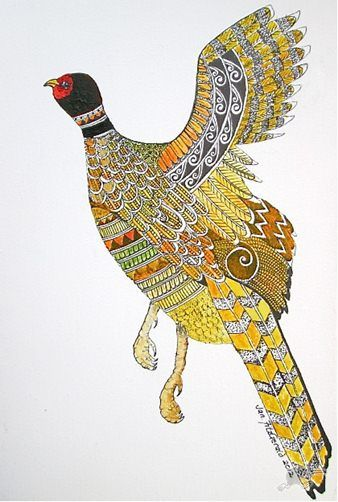 Jan Fitzgerald describes her native New Zealand birds using traditional Maori patterns for their plumage. I love the way she informs me with her drawings