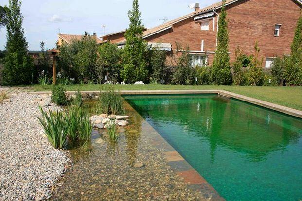 148 best piscinas biol gicas algunos ejemplos images on for Piscinas biologicas