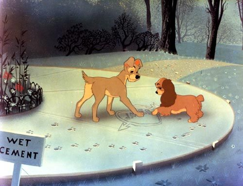 Lady and Tramp..doing their thing!!