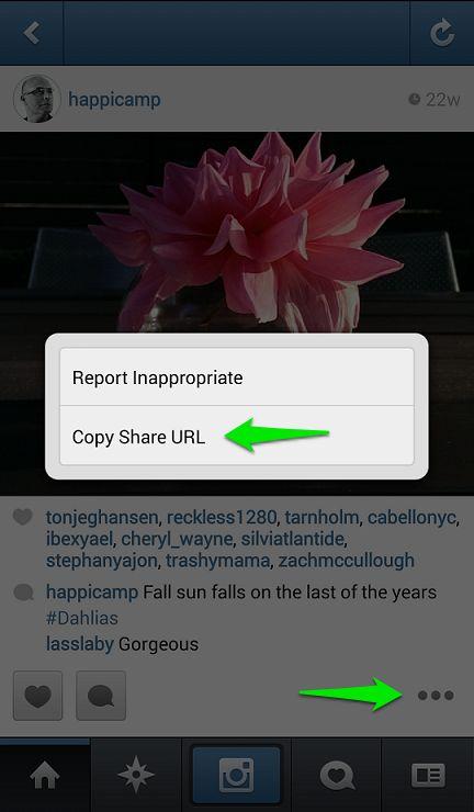 Use EasyDownloader to save Instagram photos, videos - CNET
