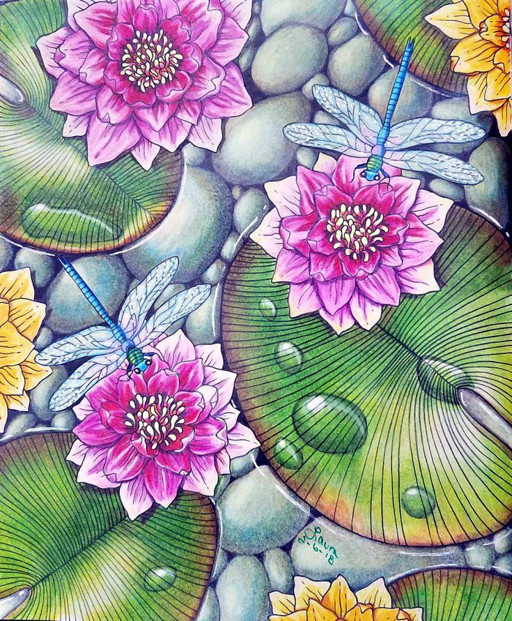 51 best My Finished Coloring Pages images on Pinterest Coloring - best of coloring pages watering plants