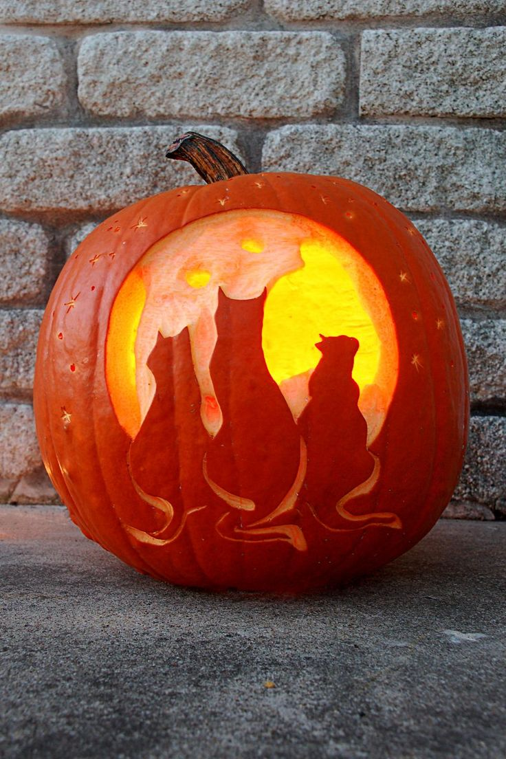 The 25 Best Cat Pumpkin Carving Ideas On Pinterest