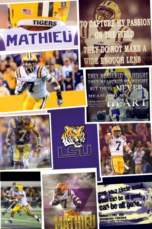 717 best images about lsu  geauxtigers on pinterest