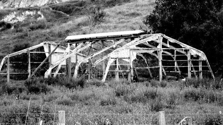 Surroundings Port Waikato New Zealand