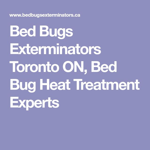 Bed Bugs Exterminators Toronto ON, Bed Bug Heat Treatment Experts