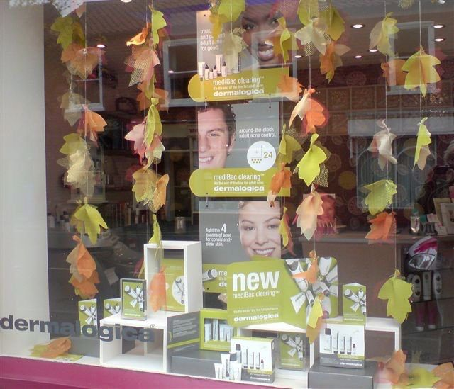Autumn window - Dermalogica MediBac